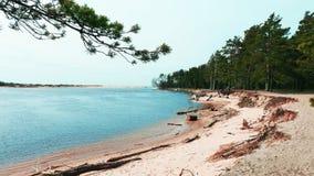 baltiska estonia nära havssomethere tallinn Royaltyfri Foto