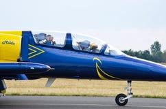 Baltiskt bibildande på Radom Airshow, Polen arkivfoton