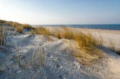 baltiskt dynhav Fotografering för Bildbyråer