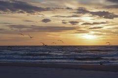 Baltiskt hav 3 Arkivbilder