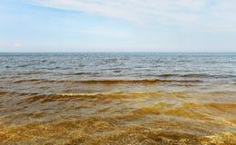 baltiskt smutsigt hav Arkivbilder