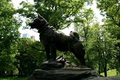 Balto monument i New York royaltyfria foton