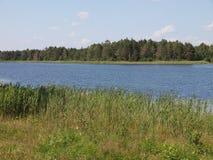 BaluoÅ ¡ o eÅ ¾ ery w AukÅ ¡ taitija parku narodowym (jezioro) (Lithuania) Obrazy Royalty Free