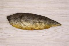 Balyk de um salmão da corcunda com um limão imagem de stock