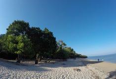 Bama strandlandskap Arkivfoto