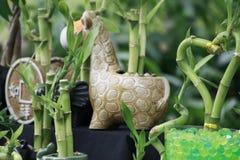 Bambù immagine stock