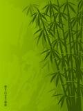 Bambù Fotografia Stock Libera da Diritti