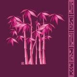 Bambù illustrazione di stock