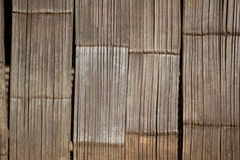 Bambù asciutto Fotografie Stock