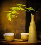 Bambù in bottiglia fotografie stock