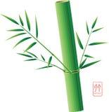 Bambù cinese illustrazione di stock