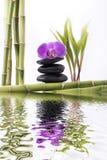 Bambù con l'orchidea e la torre porpora delle pietre nere Fotografia Stock