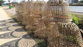 Bambù della gabbia di pollo fotografia stock libera da diritti