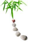 Bambù e pietre Immagini Stock Libere da Diritti