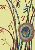 Bambù ed uccello in un nido Immagine Stock Libera da Diritti