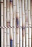 Bambù frustato insieme Immagine Stock