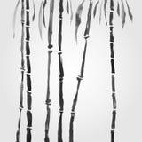 Bambù nello stile cinese Fotografie Stock