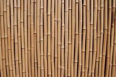 Bambù Struttura di legno naturale di alta risoluzione Fotografie Stock