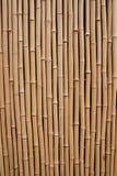 Bambù Struttura di legno naturale di alta risoluzione Immagini Stock
