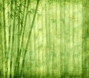 Bambù su vecchia struttura del documento di lerciume Fotografia Stock Libera da Diritti