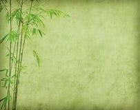 Bambù su vecchia struttura della carta di lerciume Immagine Stock Libera da Diritti