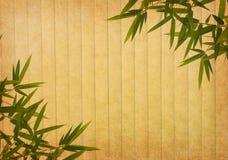 Bambù su vecchia struttura della carta di lerciume Fotografia Stock Libera da Diritti