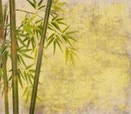 Bambù su vecchia struttura della carta di lerciume Fotografie Stock Libere da Diritti