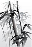 Bambú 04 ilustración del vector