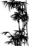 Bambú 6 ilustración del vector