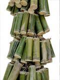 Bambú aislado Imagenes de archivo