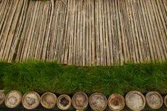 Bambú e hierba Imagenes de archivo