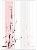 Bambú en el estilo asiático drenado por la tinta. Imagen de archivo