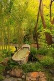 Bambú japonés del jardín de té Fotografía de archivo