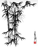 Bambú oriental