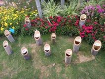 Bambú sonriente de la cara imágenes de archivo libres de regalías