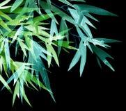 Bambú tropical de neón con las hojas stock de ilustración