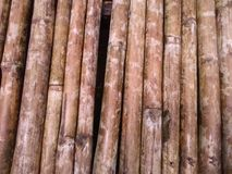 Bambú viejo Fotos de archivo libres de regalías