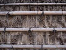 bambú y textura del fondo Foto de archivo