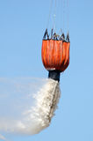 Bambi bucket demo Royalty Free Stock Photos