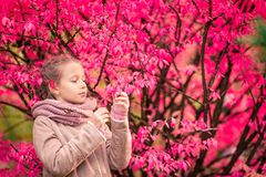 Bambina adorabile al bello giorno di autunno all'aperto fotografia stock libera da diritti