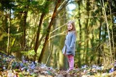 Bambina adorabile che seleziona i primi fiori della molla nel legno Fotografie Stock Libere da Diritti
