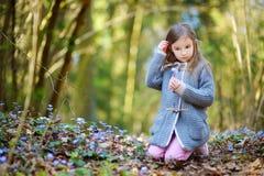 Bambina adorabile che seleziona i primi fiori della molla nel legno Immagine Stock