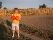 Bambina adorabile che tiene due piccole zucche sul campo fotografie stock