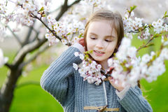 Bambina adorabile nel giardino di fioritura della ciliegia Immagine Stock Libera da Diritti