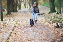 Bambina che cammina con il suo cane immagini stock