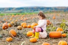 Bambina che coltiva sulla toppa della zucca Immagini Stock Libere da Diritti
