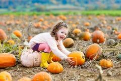 Bambina che coltiva sulla toppa della zucca Immagini Stock