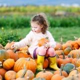 Bambina che coltiva sulla toppa della zucca Immagine Stock