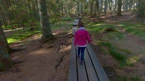 Bambina che fa un'escursione sulla passerella attraverso il legno archivi video