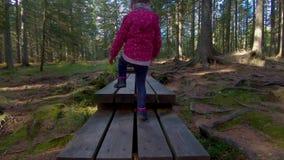 Bambina che fa un'escursione sulla passerella attraverso il legno stock footage